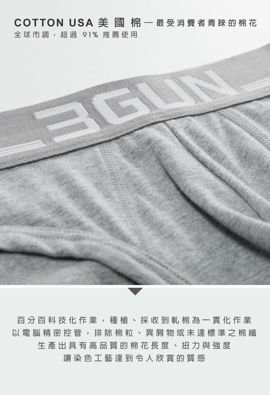 3GUN  男性時尚內衣褲MIT品牌-棉感-超值3入男彈力棉三角褲組