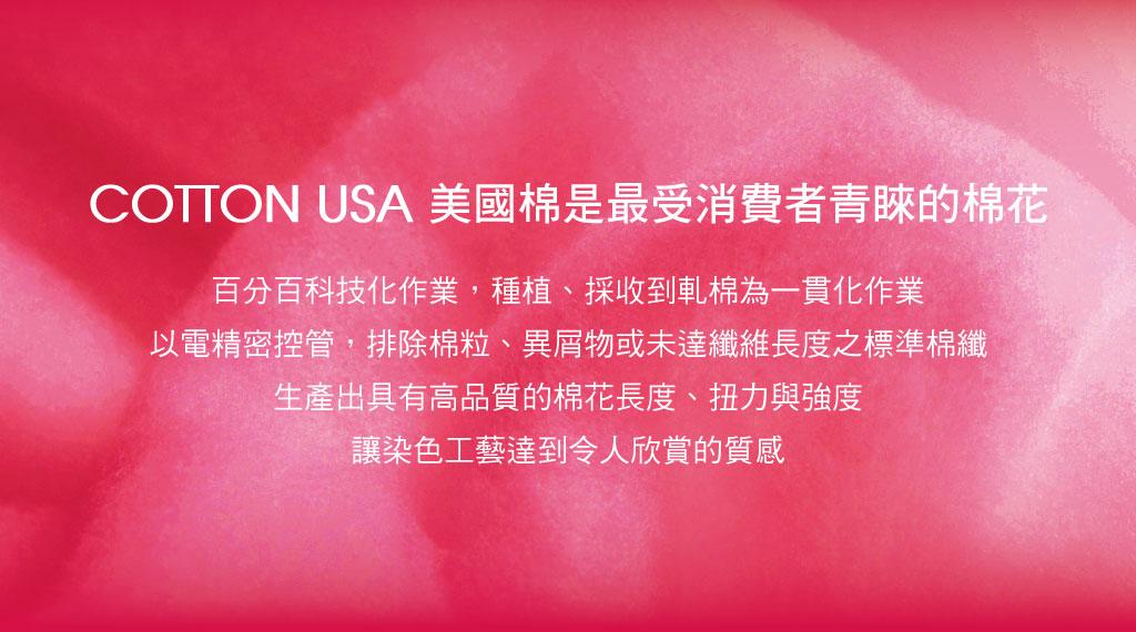 3GUN |男性時尚內衣褲MIT品牌-棉感-國旗男彈力棉三角褲組